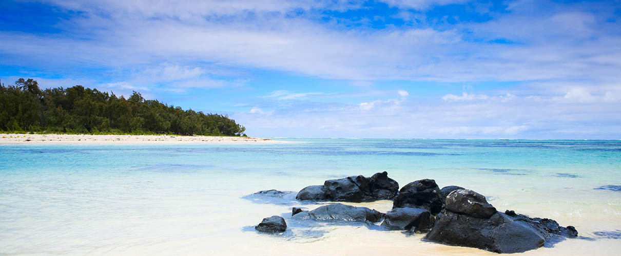 beach_filaos_trees_mauritius